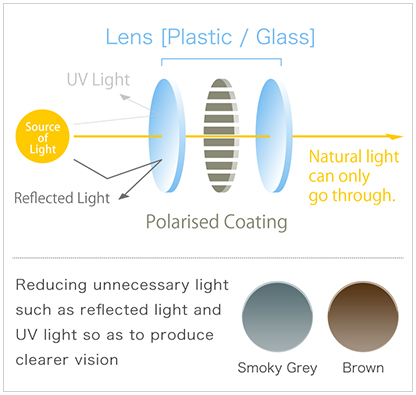 feature of Polarised Lenses